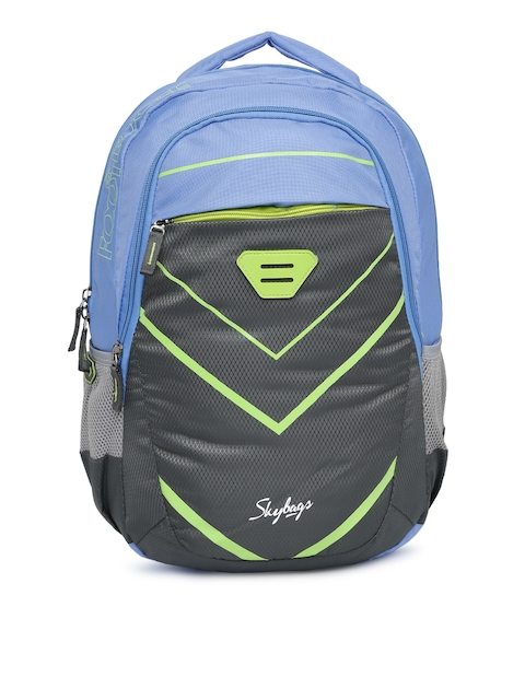 Skybags Unisex Grey & Blue Colourblocked Backpack