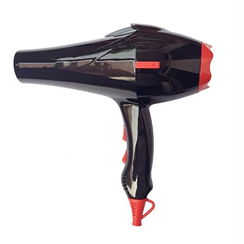 Inglis Lady Professional Hair Dryer 2200 Watt Salon Ionic Blow Dryer with Nozzle Fast Drying Hair Care & Long Cord for Home Or Hairdressers Rw1750