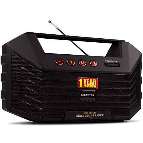iBELL Castor FM660BT Portable FM Radio with Bluetooth Speaker, USBSDMP3 Player & Dynamic Speaker 9 Band,Black