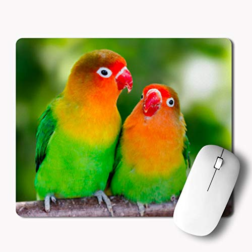 iKraft A Pair of Lovebirds Cute Printed Mouse Pad- -Custom Mousepad for Laptop/Computer- Multicolor