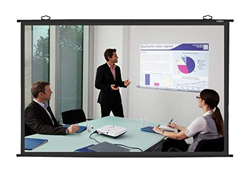 Spline Universal MAP Type Projector Screen(8 Ft.(Width) x 6 Ft. (Height) -120'') Diagonal in 4:03 Ratio Aspect Supporting