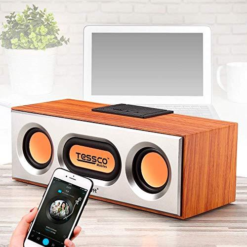 TESSCO Multifunctional Wireless Speaker (FS-320)