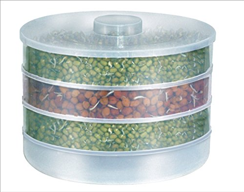 Naivete Plastic Sprout Maker Box with 4 Container