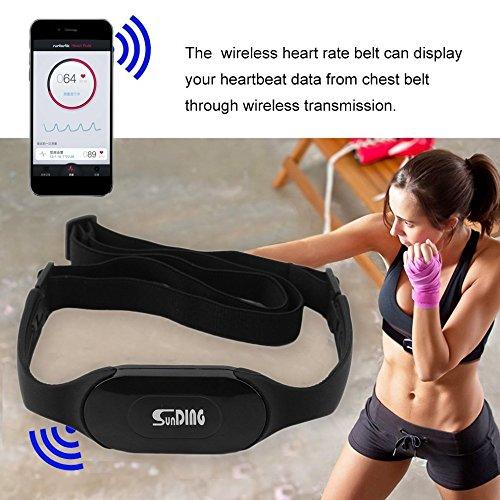 Designeez 1 Pc Pedometers (Style: black & Size: ) #Bluetooth 4.0 Wireless Heart Rate Monitor4782